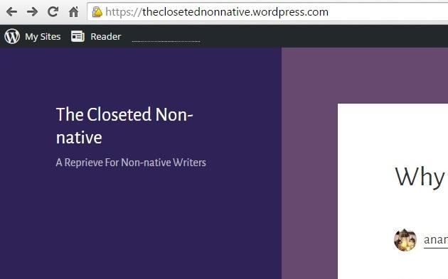 Meet My New Blog: The ClosetedNon-native